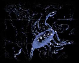 天蝎的个人空间